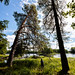 Färnebofjärdens nationalpark, July 23, 2019