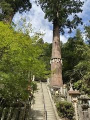 IMG_6528 Kurama temple (drayy) Tags: kurama japan temple kyoto 京都 日本 yoshitsune 鞍馬 義経