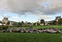Paris - Jardín des Tuileries. (EduOrtÍn.) Tags: jardin louvre museo palacio flores parís francia
