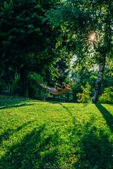 Free time (Nicola Pezzoli) Tags: italy italia lombardia val seriana bergamo leffe gandino nature natura amaca hammock green prato field sunset sunflare man cerida