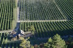 Le domaine de Tresbaudon (RarOiseau) Tags: hautesalpes automne paca vignoble paysage vert cabane agriculture tallard falaise plongée