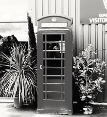 Phone box (daveandlyn1) Tags: blackwhite monochrome k6 telephonebox redphonebox phonebox thebritishironworkscentre nroswestry shropshireuk pralx1 p8lite2017 huawei smartphone psdigitalcamera cameraphone