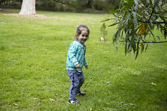 (louisa_catlover) Tags: maranoa maranoagardens garden park nature outdoor spring september portrait family child toddler daughter tabby tabitha
