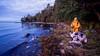 Helsinki mornings 🐶🌴 (Esa Suomaa) Tags: helsinki suomi finland mansbestfriend autumn beach sea scandinavia bluemerle collie olympusomd