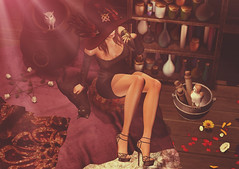 What a witch needs... (Deva Westland) Tags: gos fameshed jian witch remarkableoblivion justbecause bauwerk randommatter hextraordinary pome aisling