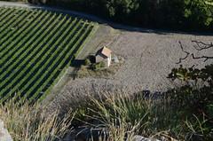 Sur la falaise (RarOiseau) Tags: tallard cabane vignoble automne falaise chemin paca hautesalpes plongée saariysqualitypictures