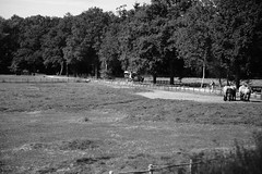 030 (boeddhaken) Tags: backintime timetravel 1900 1900s blackwhite bw retro retrostyle museum horseandcarriage horse countryside