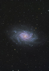 Triangulum Galaxy (AstroBackyard) Tags: triangulum galaxy m33 messier 33 astrophotography astronomy space night sky stars stargazing star party black forest universe cosmos telescope