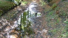 Gut Altenkamp im Spiegel (achatphoenix) Tags: gutaltenkamp papenburg emsland reflection mirror spiegelung