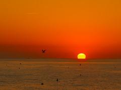 SUNRISE IN CALELLA P9300911 (hlh 1960) Tags: nature natur landschaft landscape sun sunrise sonne sonnenaufgang sol soleil atardecer farben colour spain espania calella wasser water meer wellen lich light mittelmeer bojen urlaub holyday