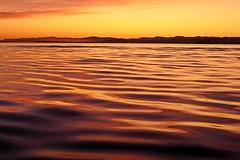 Bahía de Santander (alfonsocarlospalencia) Tags: bahía santander amanecer paz sofrosine tranquilidad naranja ondas luz horizonte siluetas claridad belleza arrugas equilibrio agua sencillez soledad textura