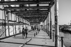 Columns on the waterfront (Rob A Dickinson) Tags: fuji x100 blackandwhite monochrome waterfront ipswich suffolk