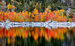Fall Colors at Lake Sabrina in the Eatsern Sierra (RS2Photography) Tags: fall colors colours trees red orange tree nature water yellow stone canon photography ross natur bishop 80d landscape flickr lakesabrina piyah naturephotography canon80d rs2photography bishopcreek lake sabrina fallcolors colourful smugmug reflection california rocks light art mountains sierranevada easternsierra eos whatever sierranevadas easternsierras