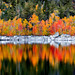 Fall Colors at Lake Sabrina in the Eatsern Sierra