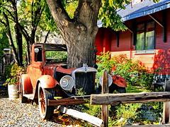 "An HFF series: A rusty vintage ""wood-fueled"" car (+3) (peggyhr) Tags: peggyhr hff img6144a ashcroft bc canada vintagecar tree fence dslrautofocuslevel1 super~sixbronze☆stage1☆ level1pfr dslrautofocuslevel2 super~six☆stage2☆silver thelooklevel1red thelooklevel2yellow thelooklevel3orange carolinasfarmfriends thelooklevel4purple dslrautofocuslevel3 thelooklevel5green 50faves thelooklevel6blue theimaginativecamera"