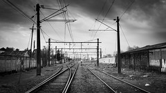 Líneas del tren