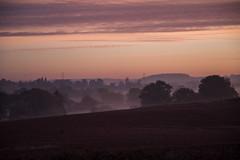 Sunrise mist and haze (OzzRod) Tags: pentax k1 hdpentaxdfa28105mmf3556 dawn sunrise fields haze mist weedonbec northampton england pentaxart dailyinoctober2019