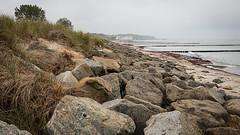 Heiligendamm Strand (Zarner01) Tags: 24092019 80d canon heiligendamm ostsee strand cormoran mecklenburgvorpommern deutschland germany ostseebad ostseebadheligendamm steine stones buhnen canoneos80d efs18135 isstm outdoor