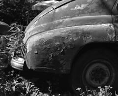 Warranty Expired  (MF Tri-X 400) (Harald Philipp) Tags: georgia car rust dilapidation graveyard gf670 fujifilm trix iso400 6x7 120 film analog mediumformat pobeda soviet