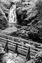 "Glenoe Waterfall near Larne in Northern Ireland (black & white version) (baldychops) Tags: tourist tourism visitor visit ""nationaltrust"" ""northernireland"" ireland mono ""blackwhite"" ""blackandwhite"" bw ""longexposure"" ""slowexposure"" footbridge bridge seat bench wet stream river trees tree rocks rock water ""glenoewaterfall"" waterfall glenoe"