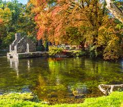 Fishman house Abbey Cong village Mayo Ireland (anastasiabyrne) Tags: mayo cong abbey fishman house river autumn fall