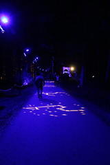 2019 - 3.10.19 Enchanted Forest Pitlochry (195) (WeeMarie1121) Tags: lights water show forest trees food visitors pitlochry enchanted cosmos theme people art stars solar marie137 colourful colour bright music sound fire imagination beautiful stunning scotland