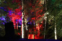 2019 - 3.10.19 Enchanted Forest Pitlochry (196) (WeeMarie1121) Tags: lights water show forest trees food visitors pitlochry enchanted cosmos theme people art stars solar marie137 colourful colour bright music sound fire imagination beautiful stunning scotland