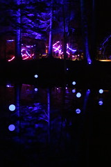 2019 - 3.10.19 Enchanted Forest Pitlochry (179) (WeeMarie1121) Tags: lights water show forest trees food visitors pitlochry enchanted cosmos theme people art stars solar marie137 colourful colour bright music sound fire imagination beautiful stunning scotland
