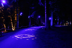 2019 - 3.10.19 Enchanted Forest Pitlochry (199) (WeeMarie1121) Tags: lights water show forest trees food visitors pitlochry enchanted cosmos theme people art stars solar marie137 colourful colour bright music sound fire imagination beautiful stunning scotland