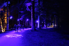 2019 - 3.10.19 Enchanted Forest Pitlochry (197) (WeeMarie1121) Tags: lights water show forest trees food visitors pitlochry enchanted cosmos theme people art stars solar marie137 colourful colour bright music sound fire imagination beautiful stunning scotland