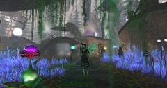 Avilion - Special Ranger Patrol (Osiris LeShelle) Tags: secondlife second life avilion heart medieval fantasy roleplay combat ranger patrol fae garden forest