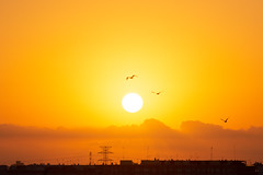 Atardecer en Valencia 44 (dorieo21) Tags: sun sunrise sunlight atardecer ocaso crépuscule crepúsculo cielo ciel soleil sol sonne sonnenuntergang himmel nube nubes cloud clouds nuage nuages sky wolke wolken nikon d7200