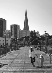 Strolling along a pier in San Francisco (PeterThoeny) Tags: sanfrancisco california usa sanfranciscobay sanfranciscobayarea transamericapyramid pier7 pier people woman girl stroll relax day clear outdoor symmetry onepointsymmetry monochrome blackandwhite sony a7 a7ii a7mii alpha7mii ilce7m2 fullframe vintagelens dreamlens canon50mmf095 canon 1xp jpg photomatix hdr qualityhdr qualityhdrphotography fav100