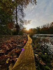 Perfect timing. (thnewblack) Tags: huaweip30pro leicaoptics outdoors nature beautiful sunflare autumn colours smartphone mobilephotography britishcolumbia telephotolens inexplore
