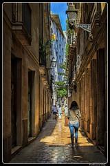 Barcelona_Barri Götic_Catalonia_ES (ferdahejl) Tags: barcelona barrigotic catalonia es dslr canondslr canoneos800d