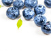 Ripe fresh blueberries with water drops on white wooden background