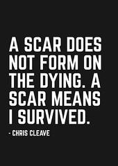 image5 (Freddy Belrose) Tags: freddybelrose scars