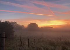 Misty morning fence...xx (shona.2) Tags: eastlothian gullane scotland lowmist field blue orangeskies pinkskies autumn sunrise haar foggy misty fencefriday hff