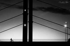 night.cycles (grizzleur) Tags: bridge theodorheussbrücke night dark low light vertical diagonal motionblur bike biker cyclist bicycle senseofscale scale artifical gradient olylove olympus olympus1250mm13563 kitlens kitlenslosers