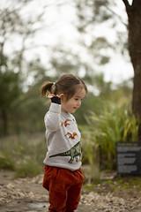 (louisa_catlover) Tags: royalbotanicgardenscranbourne australiangarden cranbourne melbourne victoria australia garden nature outdoor portrait family child toddler daughter tabby tabitha