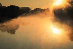 burning river (Yuki (8-ballmabelleamie)) Tags: foxriver mist sunrise sunlight wisconsin 曙光