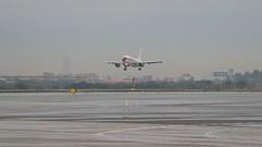 45-50 T.22-1 Airbus A-310. Sevilla Spotter Day. 26/10/2018, aeropuerto de San Pablo. (Harry Espotterr, Er Buzo.) Tags: aterrizaje landing ejercitodelaire militar military 45grupodefuerzasaéreas 26102018 aeropuerto sevilla sanpablo spotterday 4550 t221 airbusa310
