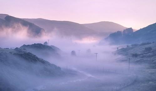Foggy Sunrise, Glendevon