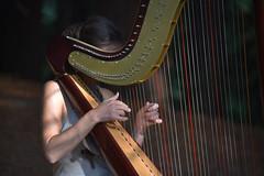 El hada del bosque de sequoias (Kasabox) Tags: cantabria bosque forest sequoias arpa music musica hada sprite mujer woman eros relax paz peace emocion emotion