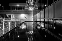 """Série """" Casino de Montréal """" (Marie Boucher) Tags: casino montréal montreal noiretblanc blackandwhite nuit night escalier stairs silhouette eau water reflet reflection réflexion architecture lignes lines"""