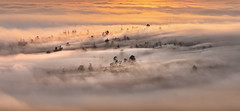 Loureiro (Noel Feans) Tags: loureiro teo galiza galicia neboa fog mist mencer sunrise val ulla monte piquiño luou
