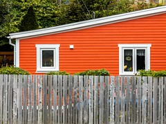Over the Fence (Karen_Chappell) Tags: fence house home orange white trim paint painted wood wooden architecture building quidividi newfoundland rural stjohns atlanticcanada avalonpeninsula eastcoast canonef24105mmf4lisusm window windows green clapboard canada colourful color colour bright