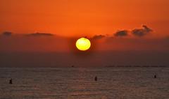 Sunrise on the beach of El Campello (En memoria de Zarpazos, mi valiente y mimoso tigre) Tags: sunrise sea seascape beach skyfire skyred birds amanecer alba sol mar sole mare spiaggia playa campello alicante nikon