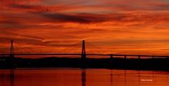 Mondego V (verridário) Tags: light low sony manana morning mattina river ponte bridge sunrise