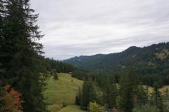 DSC02331 (Bergwandern Alpen) Tags: alpen alps bergwandern hiking kantonschwyz zwäckentobel berglandschaft herbststimmung autumn nadelwald forest mountainforest